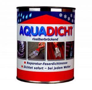 Aqua Dicht Boîte de mastic d'étanchéité Transparent1l de la marque Baden Chemie image 0 produit