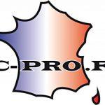 """MASTIC POLYESTER FIBRE DE VERRE""""CHOUCROUTE"""" PRO de la marque OC-PRO image 1 produit"""