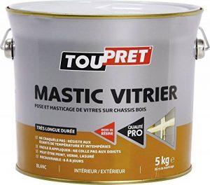 Mastic vitrier blanc 5 Kg de la marque Toupret image 0 produit