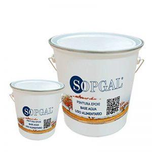 Époxy alimentaire Base Eau–4kgs + 1kgs, blanc de la marque Sopgal image 0 produit