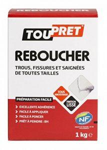 Toupret 180010 Reboucher poudre 1 kg de la marque Toupret image 0 produit